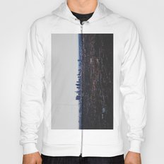 Los Angeles in fog Hoody