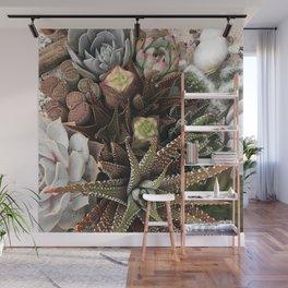 Contemporary Succulent Garden Wall Mural