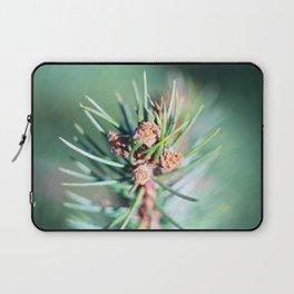 Spruce branch in spring. Laptop Sleeve
