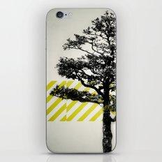 Ulmus parvifolia (Defying the Odds) iPhone & iPod Skin