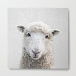 Sheep - Colorful Metal Print