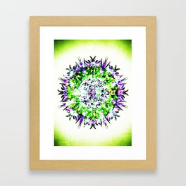 HASI Mandala Framed Art Print