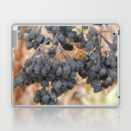Wild berries in the autumn grow in the forest Laptop & iPad Skin