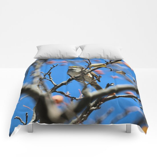 Crowned for fall Comforters