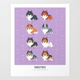 Shelties Art Print