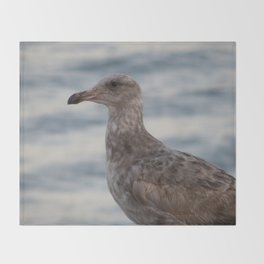Young Gull in Malibu Throw Blanket