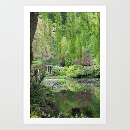 Nature's Tapestry Art Print