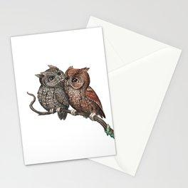 Eastern Screech Owl (Megascops asio) Stationery Cards