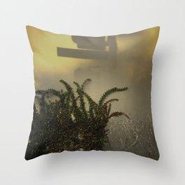 Light & Shadows #9 - 2014 Throw Pillow