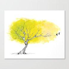 The Hummingbird Tree Canvas Print