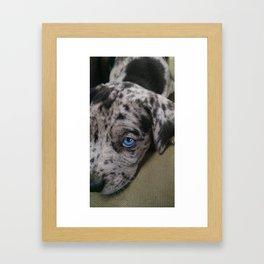 My Dixie Blue Framed Art Print
