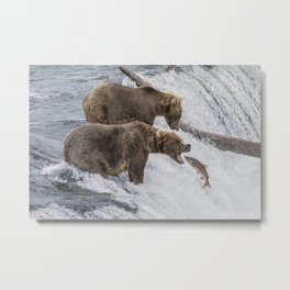 The Catch - Brown Bear vs. Salmon Metal Print