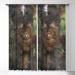 Wild Cat - Tree-hugger Blackout Curtain
