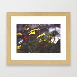 Nature - Wild Yellow Framed Art Print