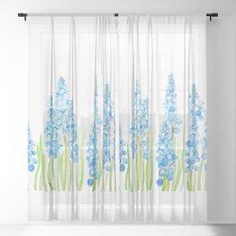 blue grape hyacinth 2  Sheer Curtain
