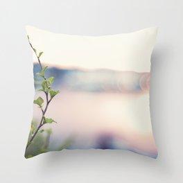 Colourful Throw Pillow