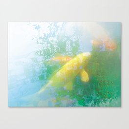 Yellow Carp Canvas Print