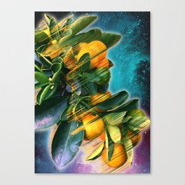Small fruit tree in outer space Canvas Print