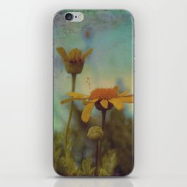 The beauty of simple things iPhone Skin