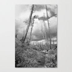 Through the Hills Canvas Print