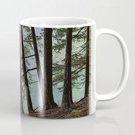 NORTH END OF MOUNTAIN LAKE Coffee Mug