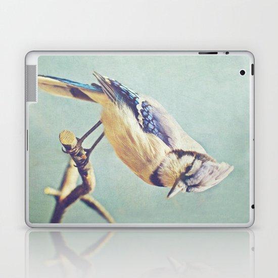 Virginia Bluejay Laptop & iPad Skin