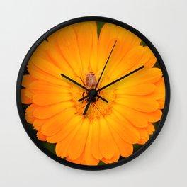 Rainy Day Honeybee Wall Clock