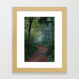 The Forest Path (Color) Framed Art Print