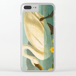 Common American Swan John James Audubon Scientific Birds Of America Illustration Clear iPhone Case