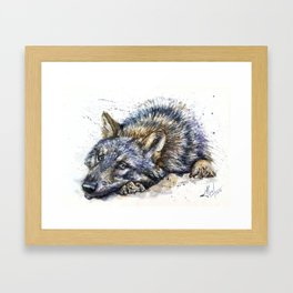 Wolf watercolor Framed Art Print