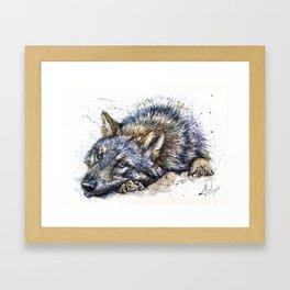 Wolf watercolor Framed Art Print
