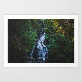 Moss Glen Falls - Vermont, USA Art Print