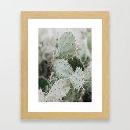 Cactus Closeup Framed Art Print