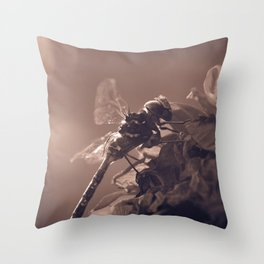 Shine bright dragonfly Throw Pillow