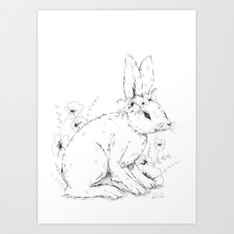 Little snowshoe hare Art Print