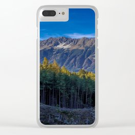 Arch of Larch Clear iPhone Case