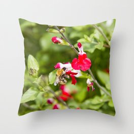 Busy bee in the flowers Throw Pillow