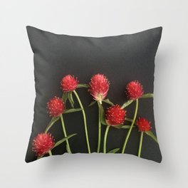 Red Straw Flowers Throw Pillow