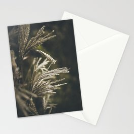 October plumage Stationery Cards