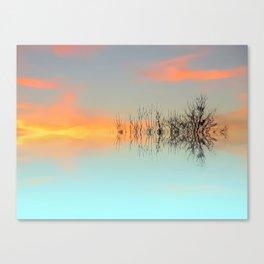 Sky twigs Canvas Print