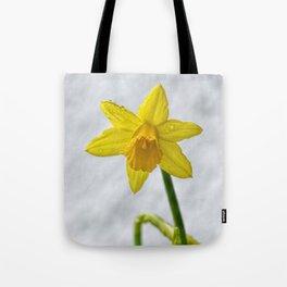 Daffodil III Tote Bag