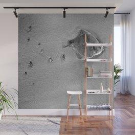 Dead fish Wall Mural