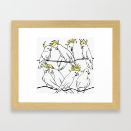 Cockatoo's Framed Art Print
