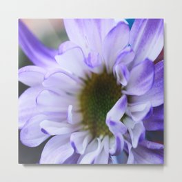 Purple Rush Metal Print