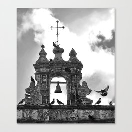 Parque de las Palomas Canvas Print