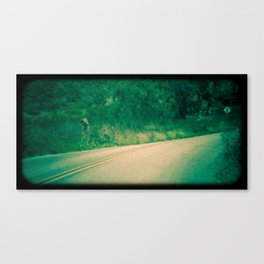 road.2 Canvas Print