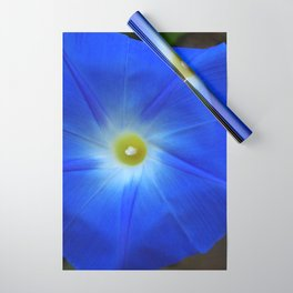 Blue, Heavenly Blue morning glory Wrapping Paper
