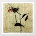"""""""Signature"""" by juliantgardea"""