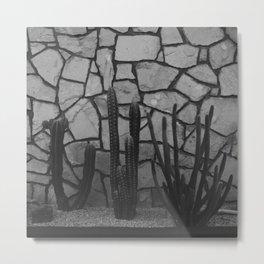Palm Springs - Cacti Garden Metal Print