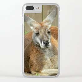 Kangroo Chillin' Clear iPhone Case